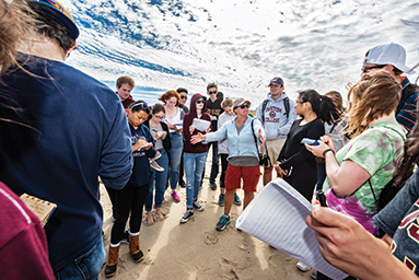 Earth and environmental sciences professor Gail Kineke and students on Nauset Beach in East Orleans, Cape Cod, September 22.