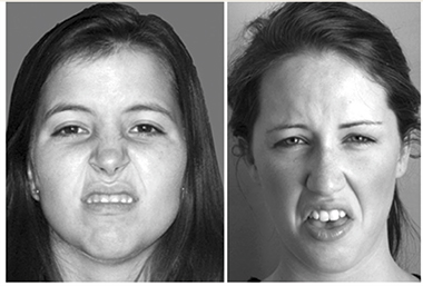 An example of the standard disgust face (left) and Russell's proposed variant, the sick face. Photograph: Springer Science+Business Media, New York, 2013
